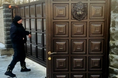 Paneled Gates